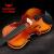 闘牛士(闘牛士)手芸の実木バイオリンが楽器を演奏する子供のバイオリンが4/4 Bのナツメ色